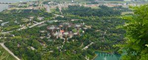 ガーデンズ・バイ・ザ・ベイは絶対におススメ!幻想的な雰囲気の超巨大植物園