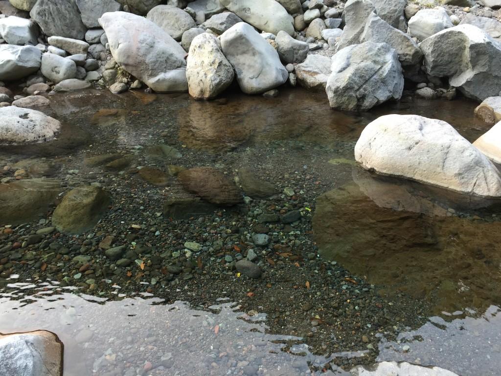 富士市の須津川で水遊び